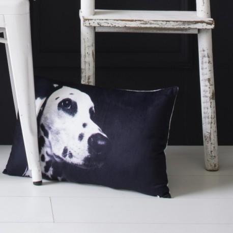 DALMATIEN - Coussin 30x50 cm Velours Imprimé Chien noir