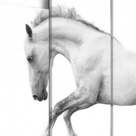 TORNADE - Tableau Cheval - Multi Cadres - 200 x 100 cm