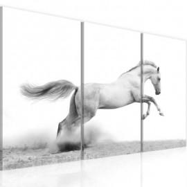 PEGASE - Tableau Cheval - 3 Cadres - 60 x 40 cm