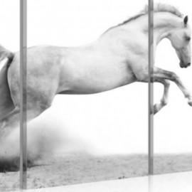 PEGASE - Tableau Cheval - 3 Cadres - 120 x 80 cm