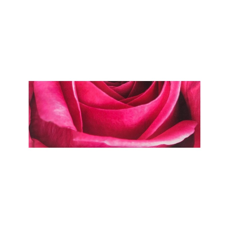 coussin roza 45x45 cm imptim coeur et p tales de fleur rose d co chambre fille adolescente. Black Bedroom Furniture Sets. Home Design Ideas
